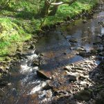 Image of a country stream