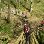 Image of walkers crossing a wooden bridge